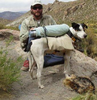 Andean Cat Alliance's Four Legged Fieldworker