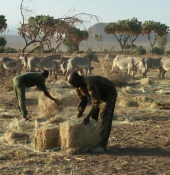Extreme Drought Brings Extreme Actions