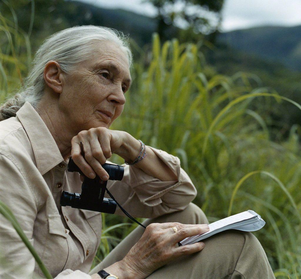 Dr. Jane Goodall; Photo credit: GANT/Morten Bjarnhof